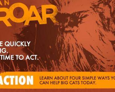 Cause An Uproar_Help Save Big Cats Initiative