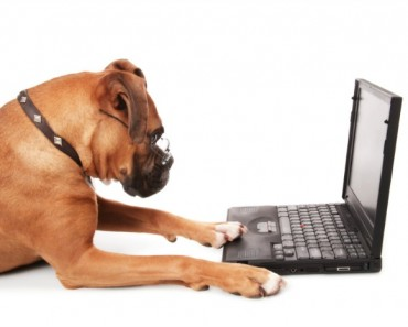 Top 50 Pet Blogs - Featured