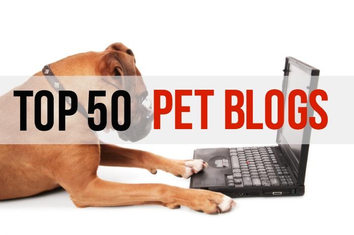 Top 50 Pet Blogs - Main