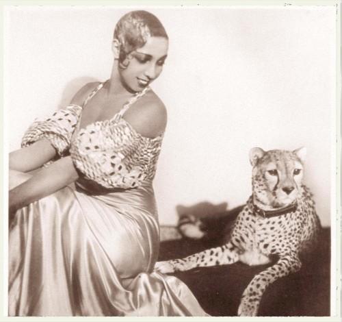 cheetah josephine baker