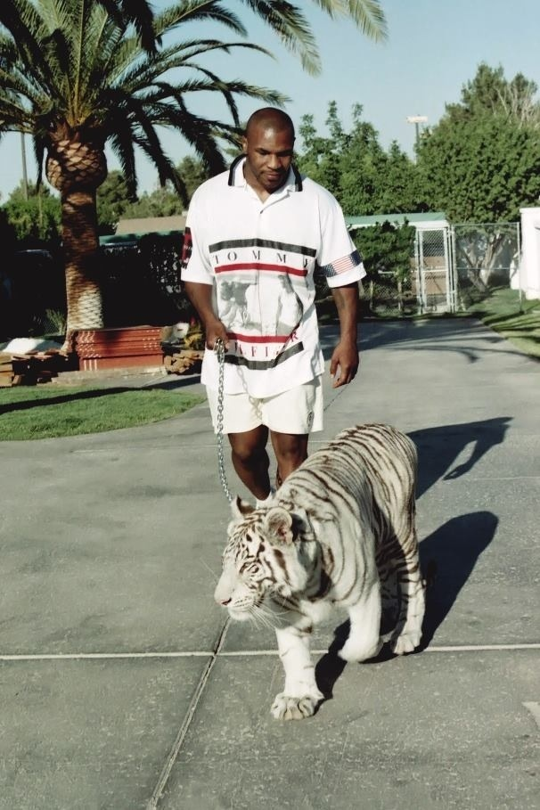 Photo of Mike Tyson & his   Tiger